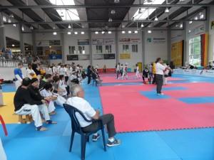Deutsche Hochschulmeisterschaften im Taekwondo 2015 - Bericht für die Uni Erlangen-Nürnberg - Bild Halle